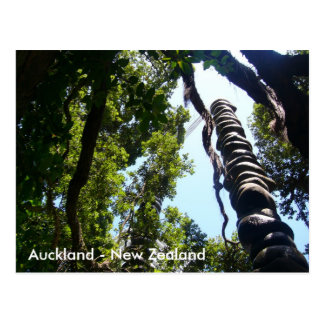 Auckland Post card