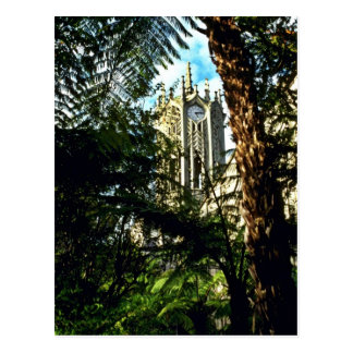 Auckland University Post Cards