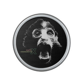 Audio Enematron X Bumpster Speaker