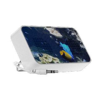 "Audio loudspeaker ""more under the sea "" travel speakers"