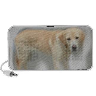 Audio loudspeaker of blond Labrador Travelling Speakers