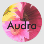 Audra Stickers
