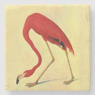 Audubon American Flamingo Painting Stone Coaster