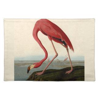 Audubon American Flamingo Placemat