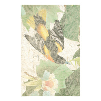 Audubon Birds Faux Handmade Paper Stationery