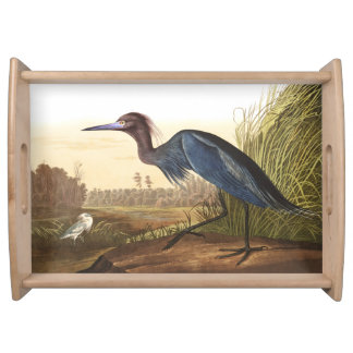 Audubon Blue Heron Birds Wildlife Serving Tray