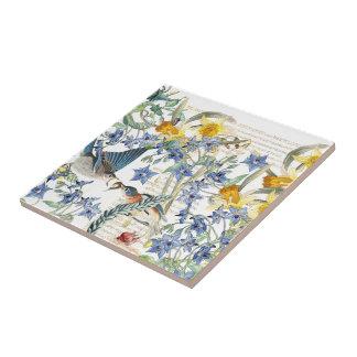 Audubon Bluebird Birds Narcissus Flowers Tile