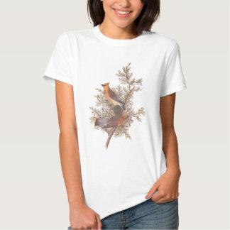Audubon Cedar Waxwing Bird T Shirt