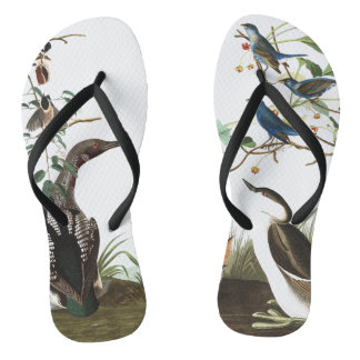 Audubon Collage Birds Wildlife Animals Flip Flops