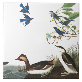 Audubon Collage Birds Wildlife Animals Tile