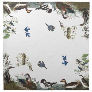 Audubon Collage of Birds Wildlife Cloth Napkins