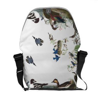 Audubon Collage of Birds Wildlife Messenger Bag