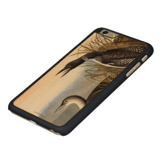 Audubon: Common Loon Carved Maple iPhone 6 Plus Case