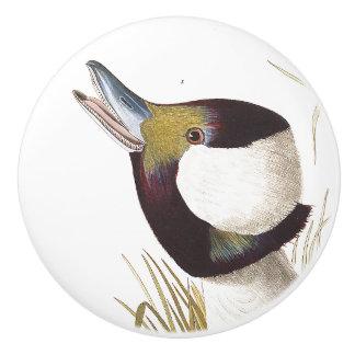 Audubon Duck Bird Wildlife Animal Knob