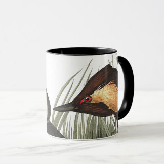 Audubon Eared Grebe Birds Wildlife Animals Mug