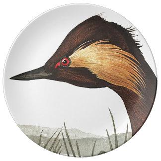 Audubon Grebe Bird Wildlife Porcelain Plate