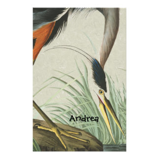 Audubon Heron Bird Wildlife Animal Stationery