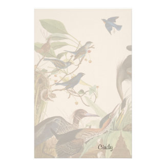 Audubon Heron Birds Animals Wildlife Stationery
