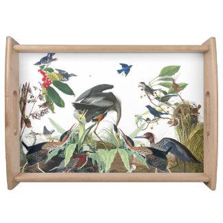 Audubon Heron Birds Wildlife Animals Serving Tray