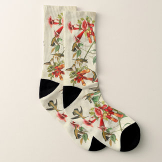 Audubon Hummingbird Birds Flowers Socks 1