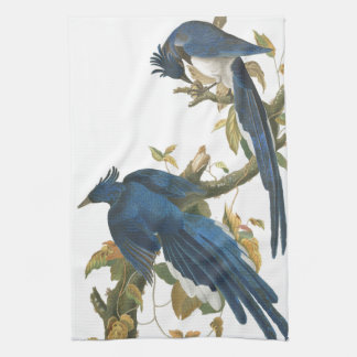 Audubon Jay Birds Animal Wildlife Kitchen Towels
