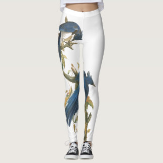 Audubon Jay Birds Wildlife All Over Print Leggings
