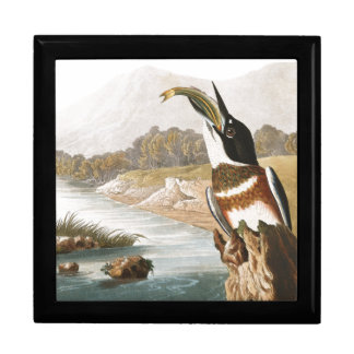 Audubon Kingfisher Bird Animals Wildlife Gift Box