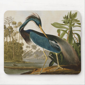 Audubon Little Blue Heron Mouse Pad