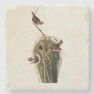 Audubon Marsh Wren Stone Coaster
