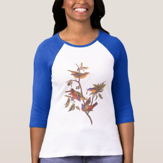 Audubon Painted Bunting Birds is Wild Plum Tree T-Shirt