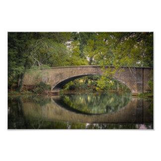 Audubon Park Bridge Reflections Photo Art
