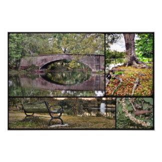 Audubon Park Montage Photo