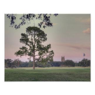 Audubon Park Sunset Photo
