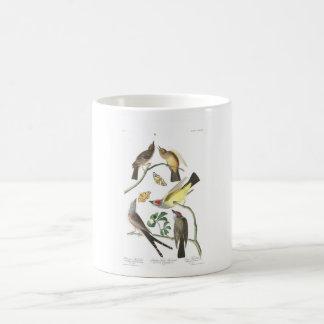 Audubon Plate 359 Arkansaw Flycatcher Mugs