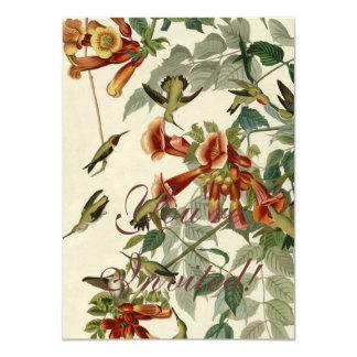 "Audubon Ruby Throated Hummingbirds 4.5"" X 6.25"" Invitation Card"