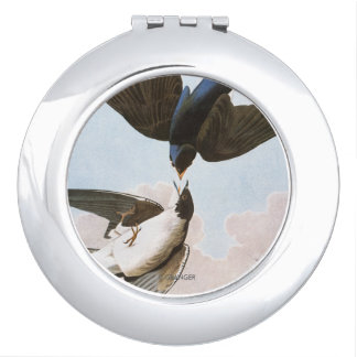 Audubon: Tree Swallow Vanity Mirror