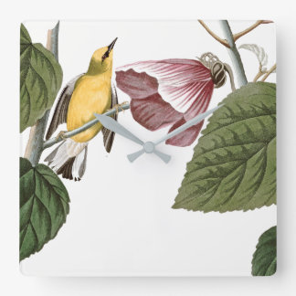 Audubon Warbler Bird Hibiscus Flower Wall Clock