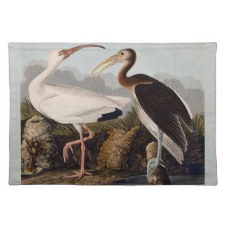 Audubon White Ibis Placemat