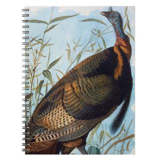 Audubon: Wild Turkey Notebooks