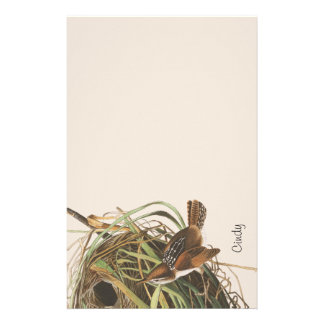 Audubon Wren Bird Nest Wildlife Stationery