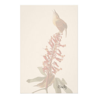 Audubon Wren Birds Animals Wildlife Stationery
