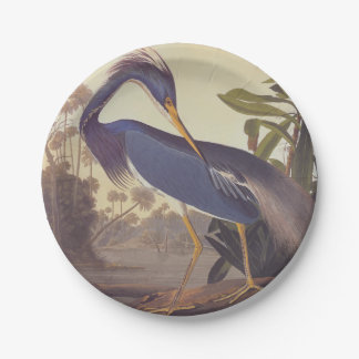 Audubon's Louisiana Heron or Tricolored Heron Paper Plate