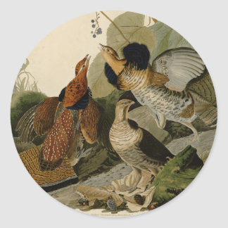Audubon's Painting of a trio of Ruffed Grouse Round Sticker