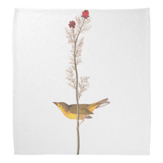 Audubon's Selby's Flycather on Red Wildflower Bandana
