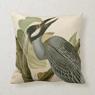 Audubon's Vintage Yellow crowned night heron paint Cushion