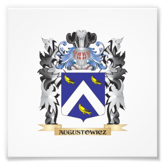 Augustowicz Coat of Arms - Family Crest Photo