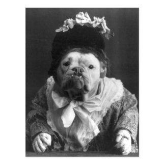 Aunt Maude Dog Postcard