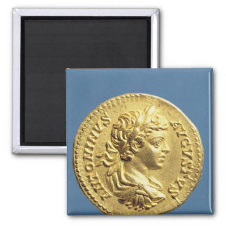 Aureus  with head of Carcalla  grapes Square Magnet