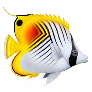 Auriga Threadfin Butterfly Fish Pin Photo Sculpture Badge