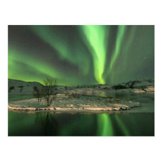 Aurora Borealis Iceland Postcard